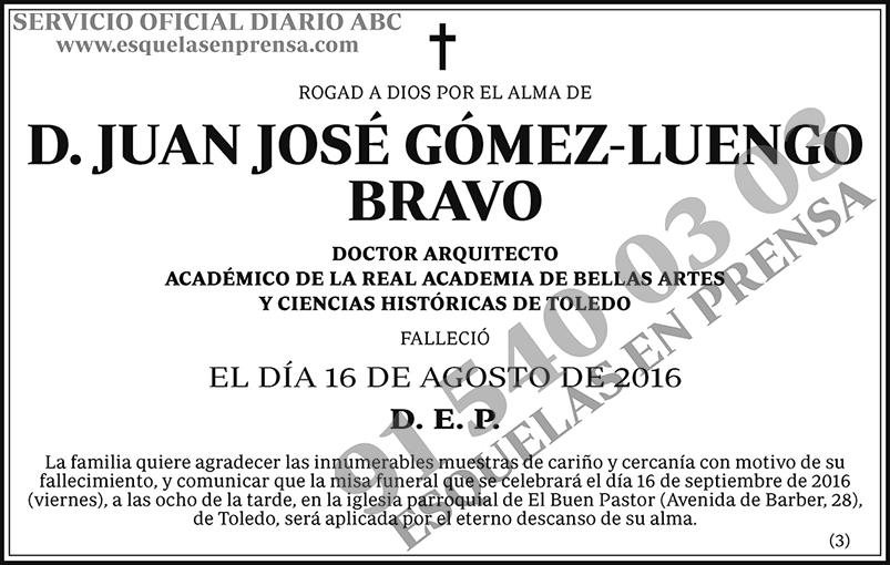 Juan José Gómez-Luengo Bravo